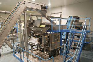 Durak Fındık Otomasyon Gücünü Artırıyor