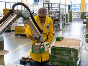 Paletleme Robotları Unilever'in, Ambalaj Sorununu Çözdü