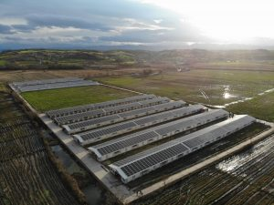 GTC, Niğde'de açtığı güneş paneli hücre fabrikası ile yerlilikte yüzde 75'e ulaştı
